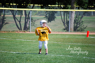 Steelers and Patriots - 018
