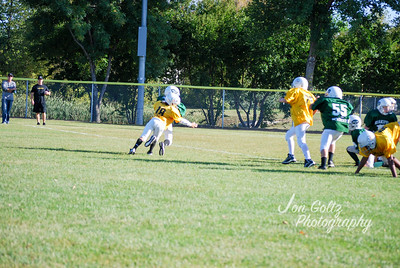 Steelers and Jets - 028