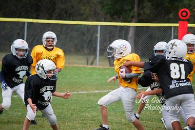 Steelers and Saints - 031