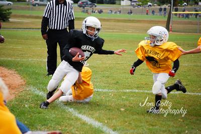 Steelers and Saints - 003