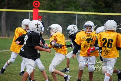 Steelers and Saints - 030