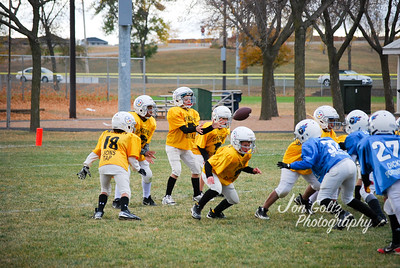 Steelers and Titans - 022