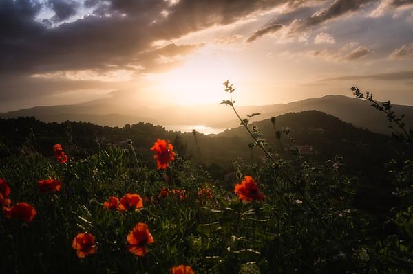 Elba Sunset