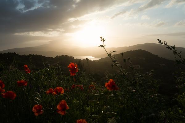 When the sun goes down | Island of Elba