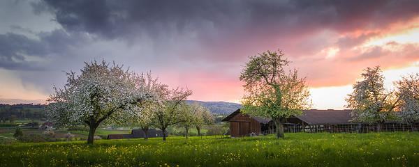 Sweet Rural Sunset