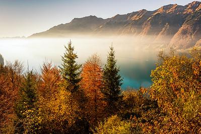 Misty Mood at Brienzersee (Switzerland)