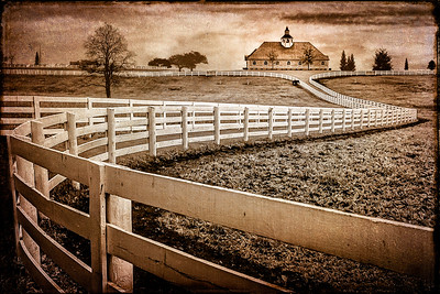 The Long and Winding Fence