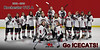 2012-13 Icecats 3x6 Banner