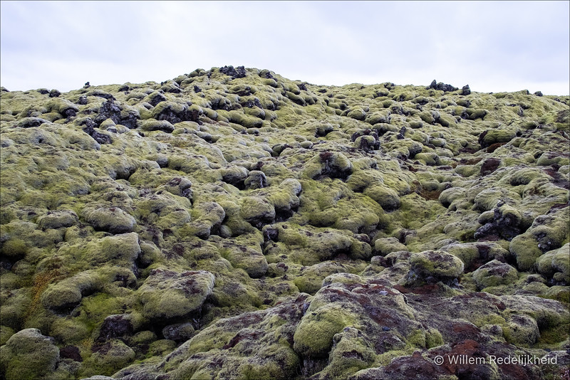 Lava Covered In Moss