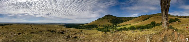 Out Of Africa - Panoramic View of the Mara