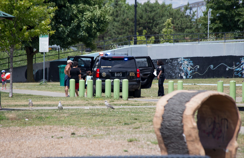 Security in LaSalle Park (near Porter Avenue Entrance)