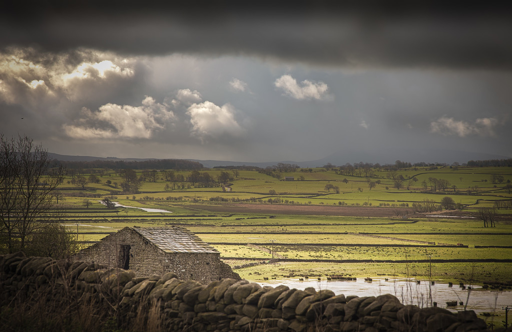 My favourite photo from our drive throught the Dales on the way back from York.  This was a busy part of the road, but i just had to stop as the clouds were rolling in and the sun was still shining over much of the landscape creating tnis dramatic effect of light and dark.  The other thing that impressed me was just how neat the drystone walls are.  I've always pictured them as rather fallen down piles of rocks.  in fact they're quite the opposite, they are extremely neat and carefully maintained.