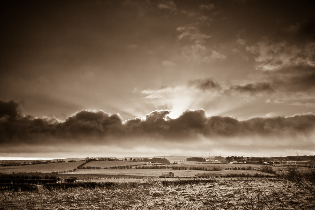 Black and white country light