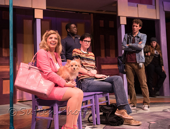 Legally Blonde-799
