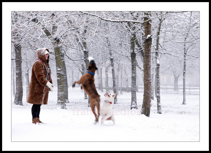 """<font face+""""Century"""" color=""""red""""> what winter attack? apparently the two can't get enough of it!</font>"""
