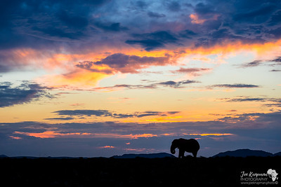 Epic African Sunset
