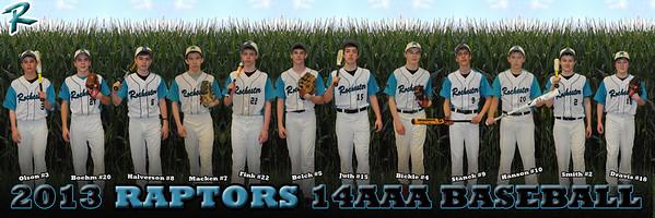 2013 Raptors 14AAA 12x36 Corn