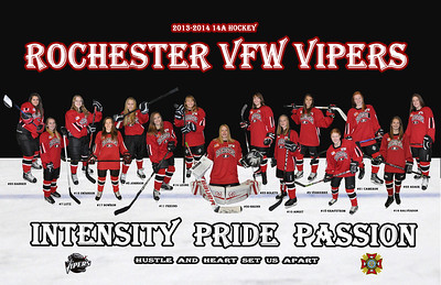 2013-14 Vipers 11x17 Poster