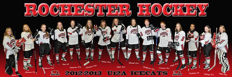 2012-13 Icecats 12x36