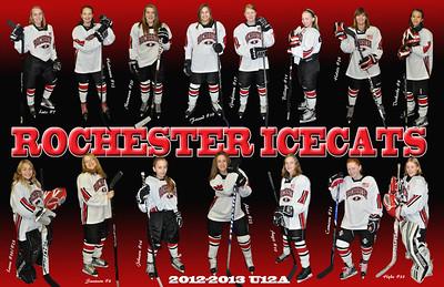 2013 Icecats 11x17