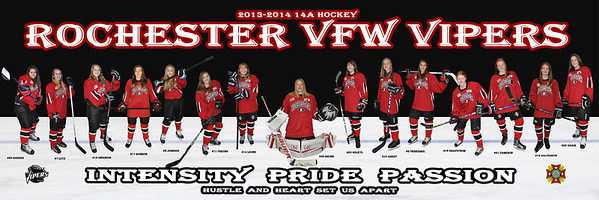 2013-14 Vipers 6x18 Poster