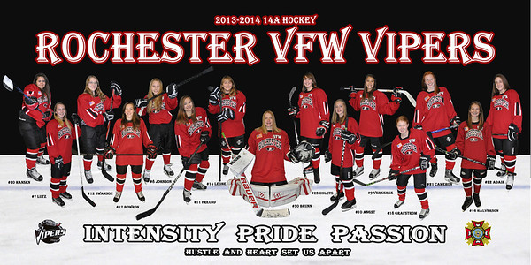 2013-14 Vipers 12x24 Banner FINAL