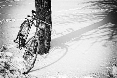 Bike in the Snow