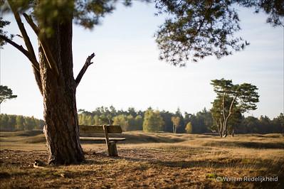 Autumn in Groot Heidestein