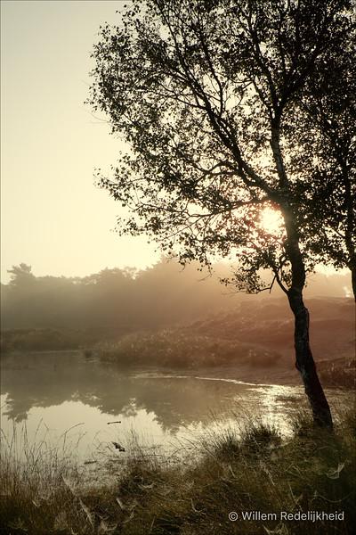 Sunrise @ Groot Heidestein