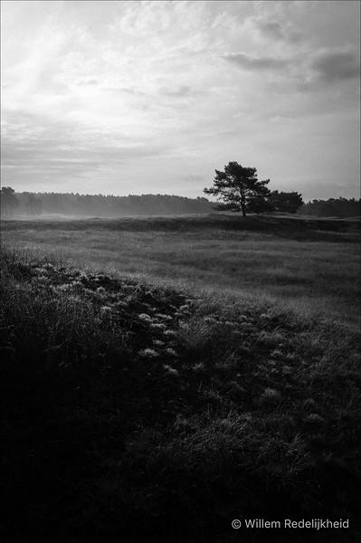 Sunrise @ Groot Heidestein in BW