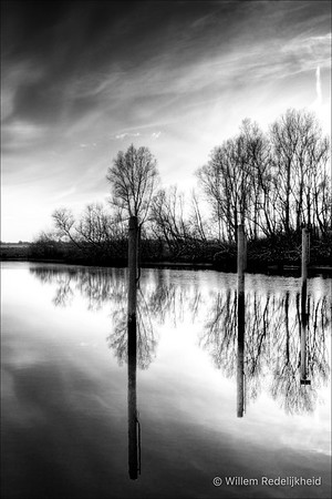 Reflections in Black and White in the Merwelanden