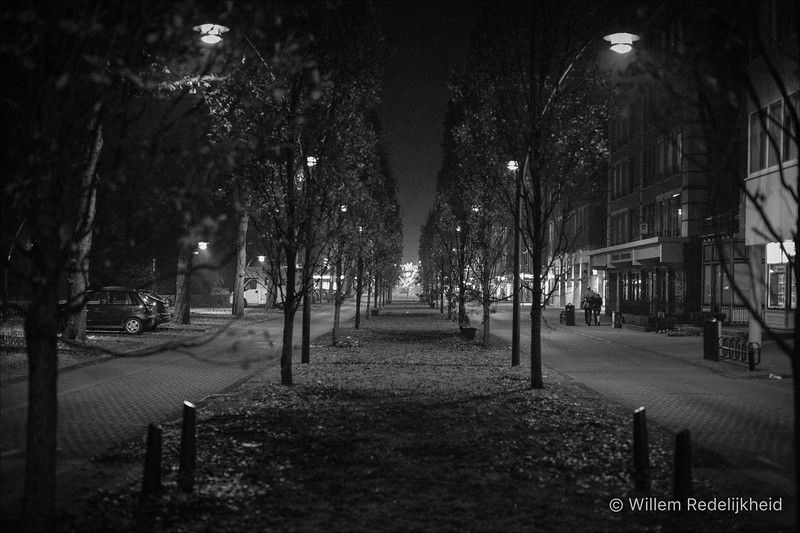 Zeist @ Night
