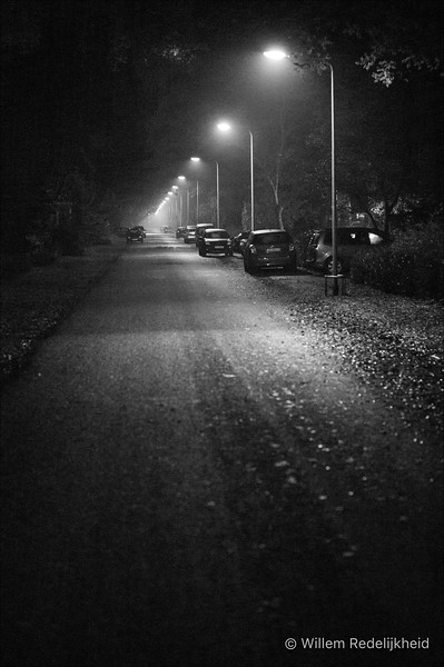 Zeist @ Night