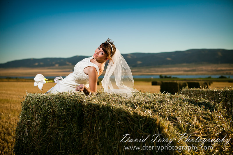 Bridals by David Terry Photography