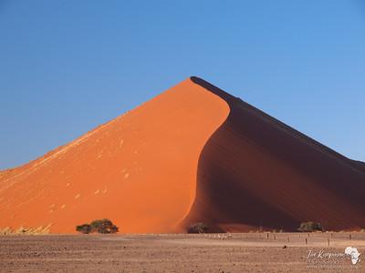 Dune 50 - Deadvlei