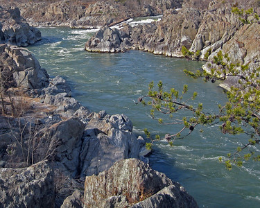The rapids flowing down from Great Falls where the Potomac meets the fall line.