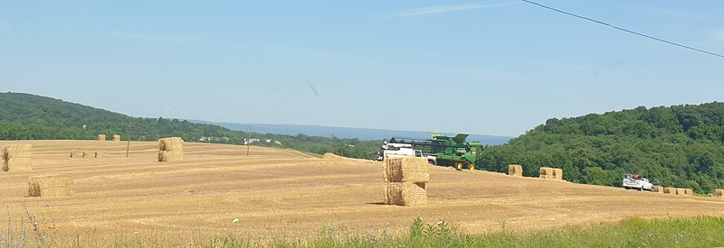 Harvest time in the Wheat fields