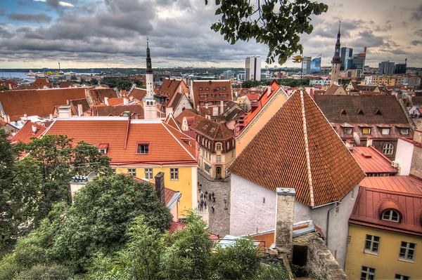 Tallinn Overlook in Old Town