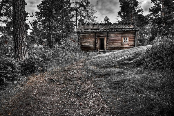 Old Cabin and Walking Stick