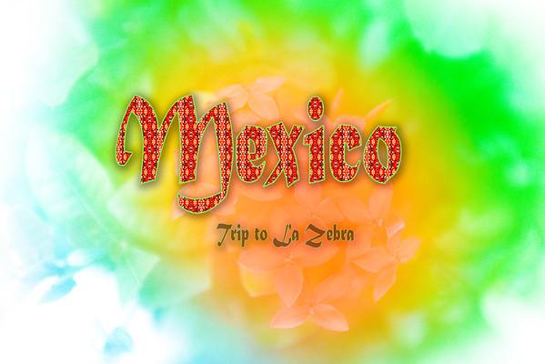 Mexico-Yucatan-235
