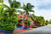 Mexico-Yucatan-207