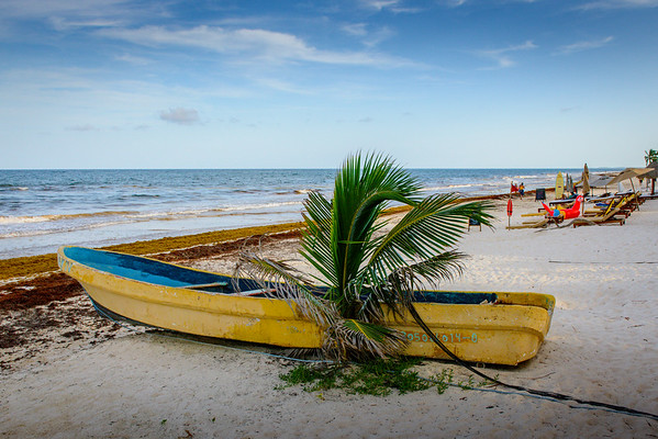 Mexico-Yucatan-249