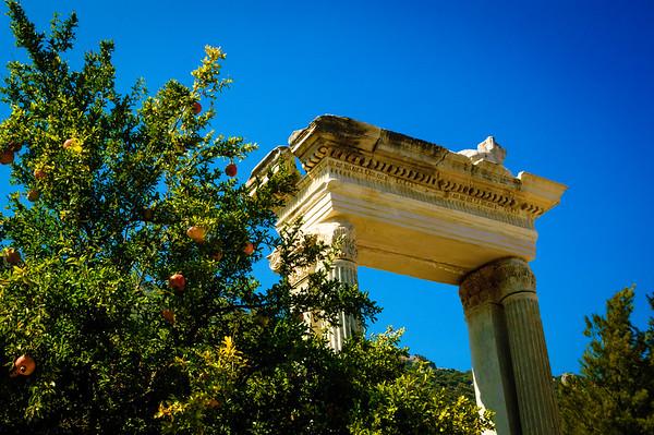 Ephesus Ruins #6