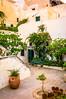 Courtyard Garden #1