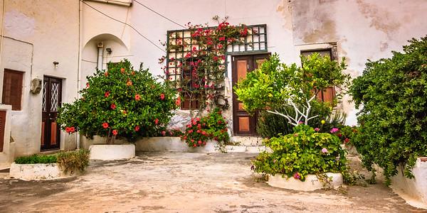 Courtyard Garden #3