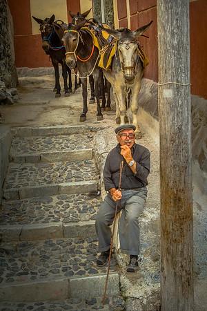 Mule Ride Guide #1