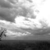 Dusk on the plains near Deniliquin, NSW