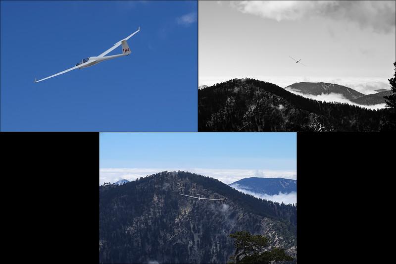 DG-1000 2-Seat Glider