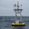 Ocean Climate Station PAPA in the Gulf of Alaska