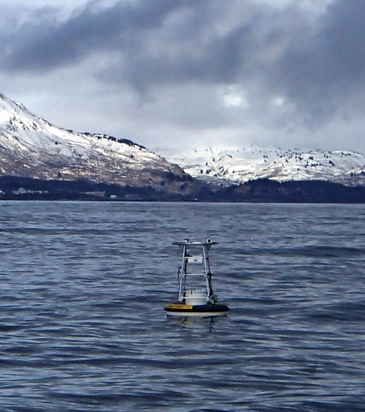 Kodiak ocean carbon buoy GAKOA - Photo from  Dan Naber (UAF).jpg